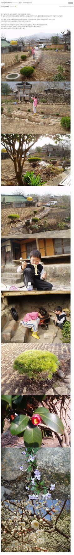 [헌집도 개조하면 멋있다] 시골집 마당 마무리  [출처: http://cafe.naver.com/kimyoooo]