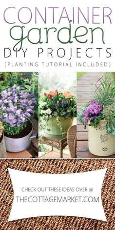 Container Garden DIY Projects - The Cottage Market Garden, ideas. pation, backyard, diy, vegetable, flower, herb, container, pallet, cottage, secret, outdoor, cool, for beginners, indoor, balcony, creative, country, countyard, veggie, cheap, design, lanscape, decking, home, decoration, beautifull, terrace, plants, house.
