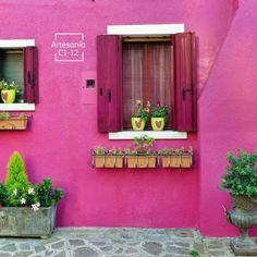 Colores típicos de México con Vinimex Total.