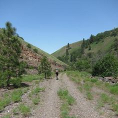 WA:  Spring is a great season to ride the Klickitat Trail. This gravel trail stretches 31 miles from the Columbia River Gorge to the Goldendale Plateau.