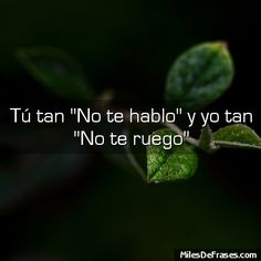 Y tan yo. Motivacional Quotes, Words Quotes, Wise Words, Funny Quotes, Sayings, Tu Me Manques, Love Phrases, Sarcastic Quotes, More Than Words