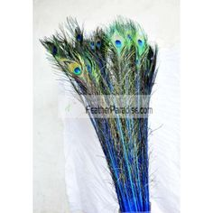 """Dyed Royal Blue Peacock Eye Feathers 30-35"""" 12 Pieces Wholesale by dozens or bulks for wedding Centerpieces Crafts arts DIY Events and Stage Performance Decorations"""