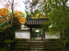 jizo institute, kyoto 竹の寺