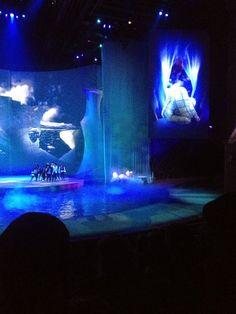 Rabarama: what I like: the Cirque du Soleil http://rabaramaofficial.blogspot.pt/2014/12/the-cirque-du-soleil.html