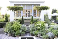 The white garden-- Formal lines and elements with changeable containers.