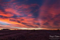 A November sunrise at the Rocky Mountain Arsenal National Wildlife Refuge.