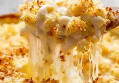 Garlic Parmesan Mac And Cheese is better than the original! A creamy garlic parmesan cheese sauce coats your pasta topped with parmesan fried bread crumbs! Instant Pot Mac And Cheese Recipe, Baked Mac And Cheese Recipe, Cheesy Mac And Cheese, Stovetop Mac And Cheese, Mac And Cheese Bites, Creamy Macaroni And Cheese, Cheese Recipes, Mac Cheese, Cheese Sauce