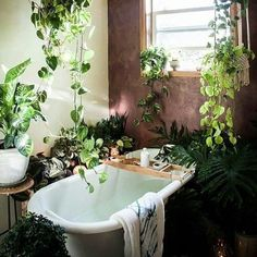 If you are fans of a fresh and colorful interior decor, using indoor plants to decorate your interior can be one of easiest ways to make a home feel more lived-in and relaxed. Adding large indoor p… Home And Deco, Bathroom Inspiration, Bathroom Ideas, Bathroom Goals, Bathroom Colors, Budget Bathroom, Bathroom Designs, Wabi Sabi, Houseplants