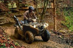 New 2016 Yamaha Grizzly ATVs For Sale in North Carolina. 2016 Yamaha Grizzly, ON SALE! COME BY BREWER CYCLES YOUR PRO YAMAHA AND YAMAHA HIGH OUTPUT CSI DEALER TODAY FOR YOUR AWESOME DEAL! ON SALE! ADVENTURE AWAITS! Tackle and traverse any trail all day long with superior handling and comfort on the all-new Grizzly®.