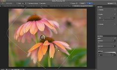 The new Blur Gallery in Photoshop CS6 provides a powerful yet easy to use interface to create selective focus and tilt lens effects. See these tools in action and learn how to successfully apply them to your own images.