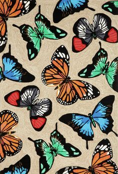 Butterfly area rug -