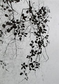 by Josias Scharf Black N White Images, White Art, Black And White, Arte Floral, Pattern Vegetal, Botanical Art, White Photography, New Art, Painting & Drawing