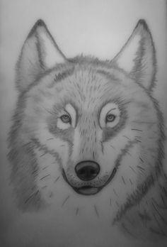 Wolf by Ionuț Scurtu (Shortie)