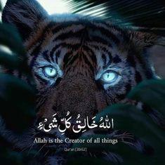 Islam Beliefs, Allah Islam, Islam Quran, Duaa Islam, Allah Quotes, Muslim Quotes, Quran Quotes, Arabic Love Quotes, Islamic Inspirational Quotes