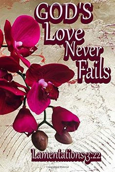 God's Love Never Fails (Lamentations Inspirational Bible Verse - Orchid Flower Cover Design Notebook/Journal with 110 Lined Pages X My Journal, Journal Notebook, Journals, God's Love Never Fails, Lamentations 3 22, Indie Books, Lined Page, Gods Love, Cover Design