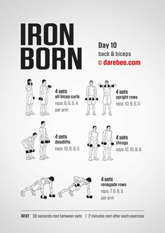 Drop the fries and move those thighs! Darebee Workout for Women Darbee Workout, Workout Days, Aerobics Workout, Dumbbell Workout, Gym Workouts, At Home Workouts, Aerobic Exercises, Iron Man Workout, Monthly Workouts