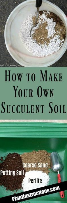 How to Make Succulent Soil 3 parts potting soil 2 parts coarse sand 1 part perlite or pumice Propagating Succulents, Growing Succulents, Succulent Gardening, Succulents In Containers, Succulent Care, Succulent Terrarium, Cacti And Succulents, Planting Succulents, Organic Gardening