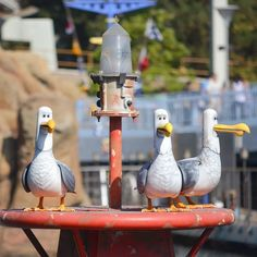 """Pin for Later: 43 Little Things You May Not Notice About Disneyland The Finding Nemo seagulls that yell """"MINE MINE MINE"""" all day."""