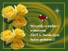 Rose, Flowers, Plants, Humor, Polish, Photo Illustration, Cheer, Floral, Humour