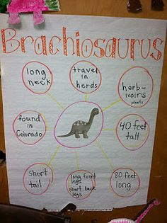 The first dinosaur we talked about was the Brachiosaurus.  I read several books and then we filled in this bubble map as a whole group.  Then we made a super cute paper plate brachiosaurus to hang in the hall.