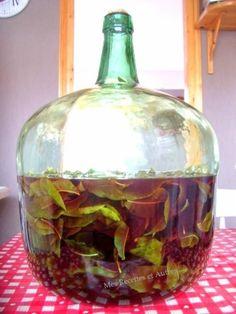 Vin de Feuilles de Pêcher (apéritif maison)
