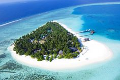Miniature Paradise Emerging From Blue Waters: Angsana Velavaru Resort, Maldives