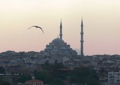 Istanbul has it all: over 2500 years of history, amazing landmarks and breathtaking views (Copyright IGRA). Green Roof System, Sustainable Development, Science And Technology, Sustainability, Istanbul, Taj Mahal, History, Building, Historia