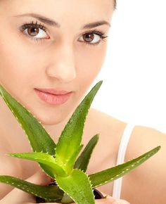 Aloe Vera is a very useful plant, a natural facial scrub that has zero disadvantage. Regular use of aloe Vera on your face will surely give you that unique look. Here are 7 ways you can use aloe Vera to achieve a smooth face Aloe Vera Mask, Aloe Vera For Face, Aloe Face, Ayurvedic Hair Care, Ayurvedic Herbs, Ayurveda, Aloe Vera Uses, Organic Aloe Vera, Increase Hair Volume