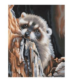 Dimensions 11''x14'' Paint By Number Kit-Daydreaming Raccoon, , hi-res