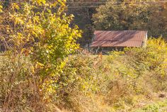 Foothills Parkway GSMNP #Smokymountains #vacation #drives