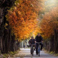 Real life. Shot this pic in Pogradec, Albania 🇦🇱 ⋅ ⋅ #korce #korca #albania #shqiperi #nikon #europe #fall  #autumn #sunset #people #whpsupernatural #ig_korca #vacation #world_vacations #balkan #street #fujifilm #igworldclub #ig_europe #ig_europa  #topeuropephoto #europe_vacations #cbviews #ig_world_colors  #Main_Vision #worldplaces  #theworldshotz #kings_villages  #travellingthroughtheworld