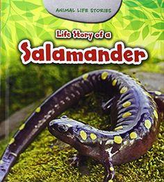 Life Story of a Salamander Young Explorer Animal Life Stories *** For more information, visit image link.