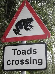 Road to be closed for a month so hundreds of toads can cross it safely:    UK – A Lincolnshire road is set to be closed for a month so that toads can cross it in order to reach their breeding grounds.   The road near Sleaford will be out of service to vehicles so that the amphibians can reach their destination without being run over and volunteers are being sought to help the little critters across.