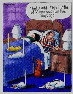 Generic Viagra is used to treat male Impotence ( Erectile Dysfunction). Buy Generic Viagra online(Sildenafil Citrate through our online pharmacy/drugstore with daily coupons. Funny Shit, Funny Cat Jokes, Cartoon Jokes, Funny Cartoons, The Funny, Funny Cats, Hilarious, Funny Stuff, Pharmacy Humor