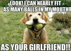The post Balls in my mouth – dog adult meme appeared first on Funny Dirty Adult Jokes, Pictures Memes, Cartoons, Ecards, Fails Adult Dirty Jokes, Funny Adult Memes, Funny Jokes For Adults, Adult Humor, Adult Cartoons, Stupid Memes, Twisted Humor, Dog Memes, T Shirts