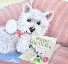 Westie happy birthday