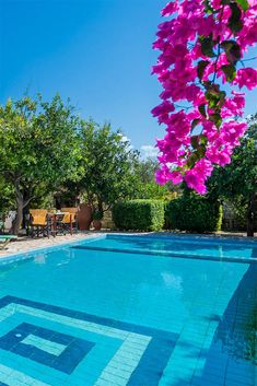 Pretty gardens, private pools and just 2km away from a sandy beach! #crete #greece #chania #summer #vacations #holiday #travel #sea #sun #sand #nature #landscape #island #TheHotelgr #villa #olive #courtyard #nature #view  #holidays #travelling #instatravel #pool #pinterest