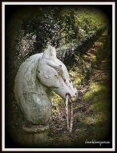 Juega el Caballo blanco, via Flickr.