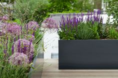 Planters Matte, modern and minimal | Outdoor Space Designed for Living
