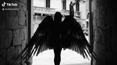 Love Poems, Love Quotes, Demon Aesthetic, Demon Wings, Wings Of Fire, Aesthetic Videos, Angels And Demons, Poetry Books, Gods And Goddesses