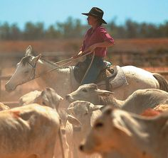 Wrotham Park Lodge in Australian Outback offers a combination of Luxury and Adventure Country Life, Country Girls, Western Photography, Australia Country, Brisbane, Melbourne, Park Lodge, Into The West, France