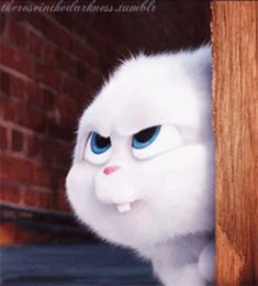 The perfect SecretLifeOfPets Snowball Cute Animated GIF for your conversation. Funny Phone Wallpaper, Cute Disney Wallpaper, Cute Cartoon Wallpapers, Cute Bunny Cartoon, Cute Cartoon Pictures, Snowball Rabbit, Rabbit Gif, Cute Cartoon Characters, Cute Love Gif