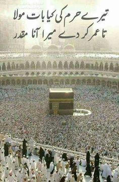 ameen plz Allah G plz Muslim Love Quotes, Love In Islam, Beautiful Islamic Quotes, Islamic Images, Islamic Messages, Islamic Pictures, Islamic Status, Allah Islam, Islam Quran