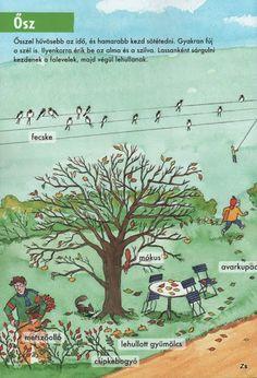 Kis tudósok szókincstára - Évszakok - Kiss Virág - Picasa Webalbumok Environmental Studies, Nature Study, Kindergarten, Homeschool, Crafts, Animals, Autumn, Manualidades, Animales