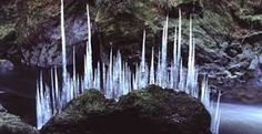 andy goldsworthy - Google Search