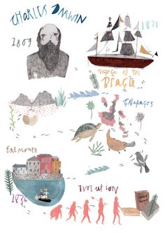 February 12th is Charles Darwin's birthday! Happy Darwin Day, everybody!   Tumblr