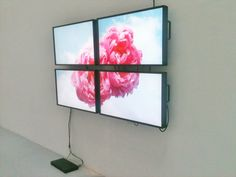 Diana Thater Untitled (Ann and Chris),  2011, 4 monitors, 1 DVD player, 1 DVD, Dimensions variable, Installation view, Galerie Hussenot, Paris, France  — Galerie Éric Hussenot, Paris