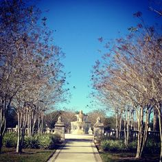 Exploring Orlando: Local Parks ~ Blue Jacket Park