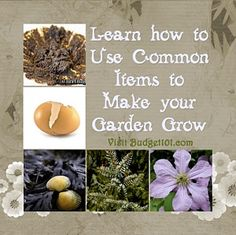 How to use Common items to make your garden grow