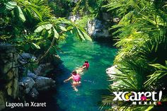 Xcaret Mexico  A week is needed to truly appreciate how beautiful this place is.  I can't wait to go back!